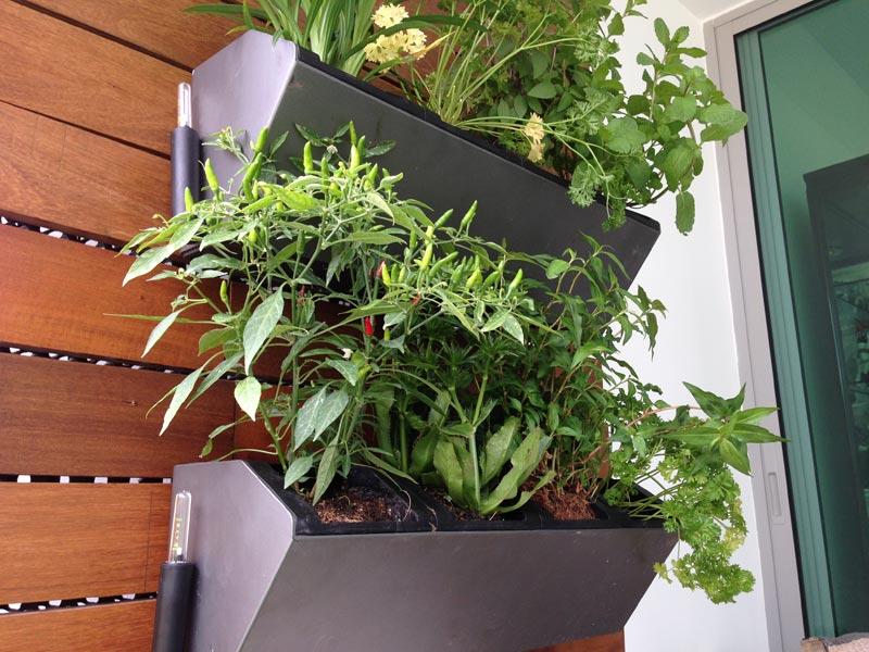 Smart-Gardener-Planter