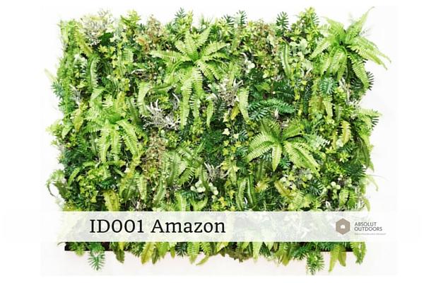 ID001-Amazon1