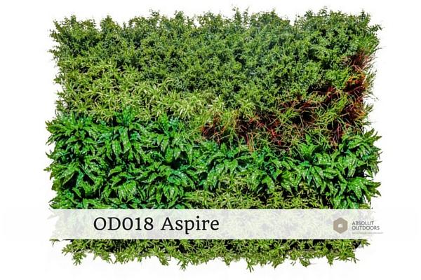 OD018-Aspire1