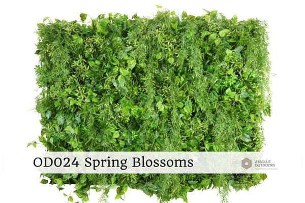 OD024-Spring-Blossoms
