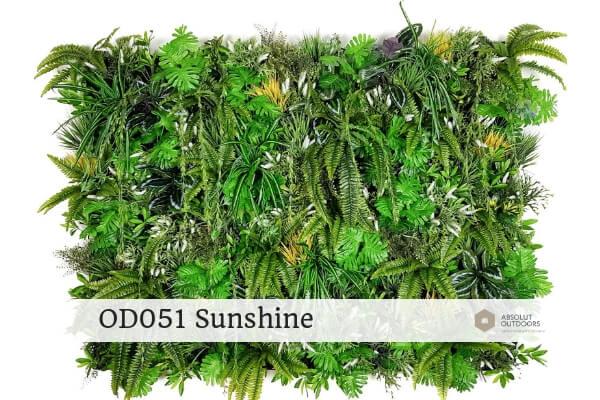 OD051 Sunshine