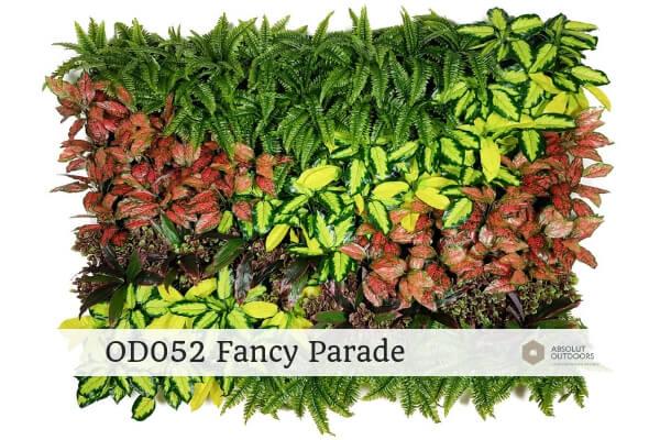 OD052 Fancy Parade
