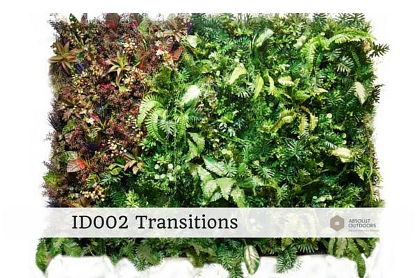 ID002-Transitions