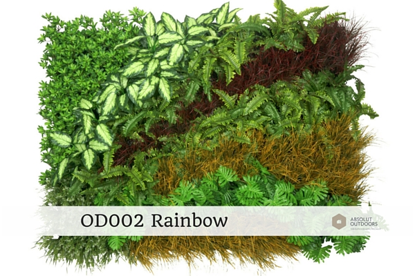 OD002-Rainbow