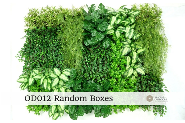 OD012-Random-Boxes