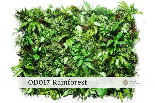 OD017-Rainforest1