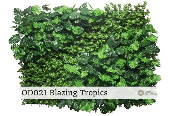 OD021-Blazing-Tropics1