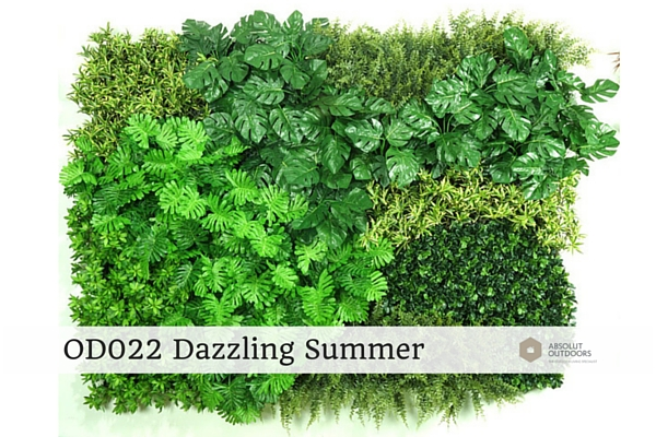 OD022-Dazzling-Summer