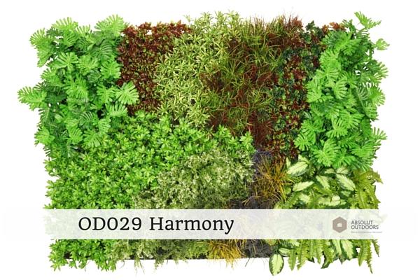 OD029-Harmony