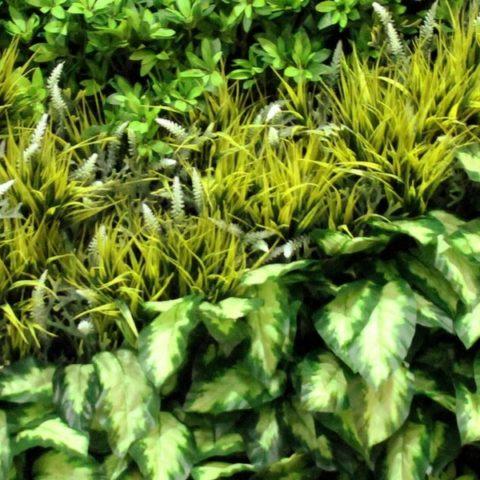 Artificial Green Wall Design