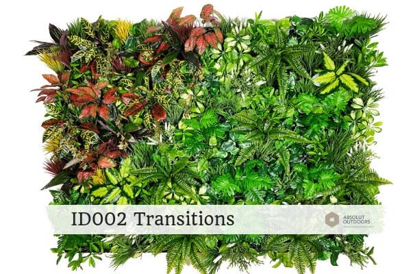 ID002 Transitions