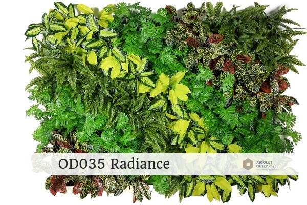 OD035 Radiance